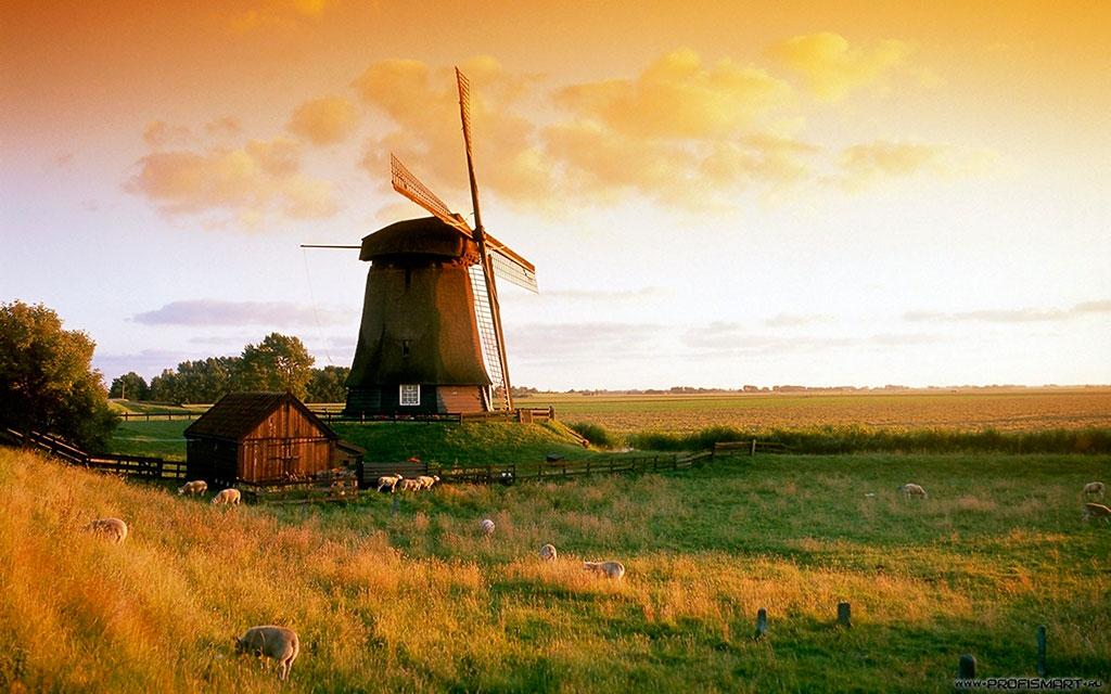 Природа Голландии